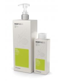 BALANCE SHAMPOO - šampūnas besiriebaluojantiems plaukams
